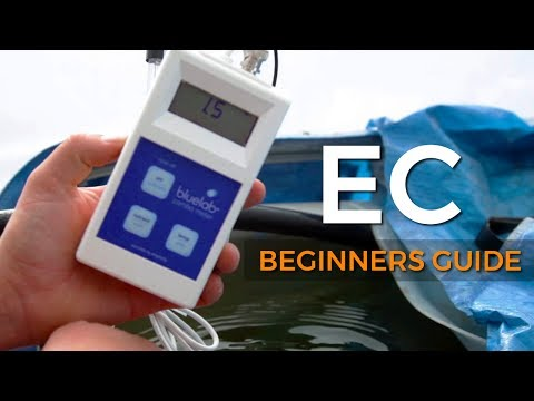A Beginners Guide: Electrical Conductivity (EC)