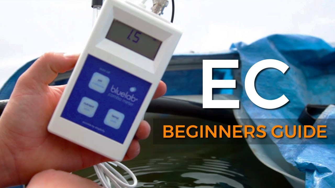A Beginners Guide: Electrical Conductivity (EC)