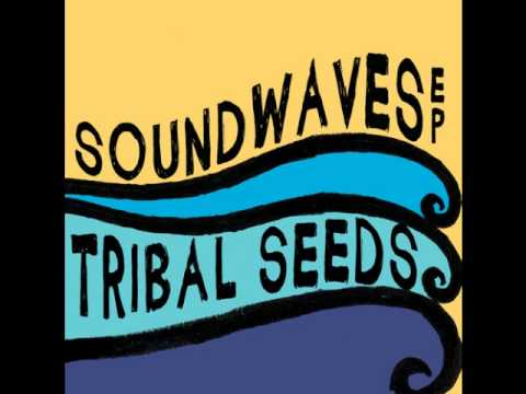 Tribal Seeds (feat. Eric Rachmany of Rebelution) - Soundwaves