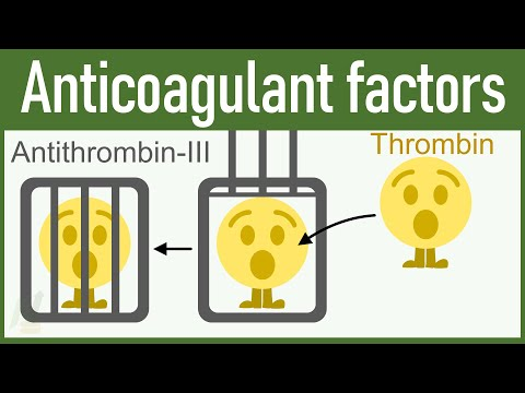 Anticoagulant Factors: Physiology