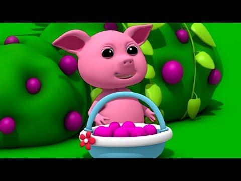 Mulberry Bush | Nursery Rhymes | Songs For Children