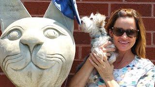 Zumi's Surgery - Amy Jo takes Zumi to the Animal Hospital, DCTC Puppy