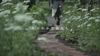 【庭と暮らし】レンガの小径が完成しました🍀/日常の家事/観葉植物の挿し木をする/お弁当作り