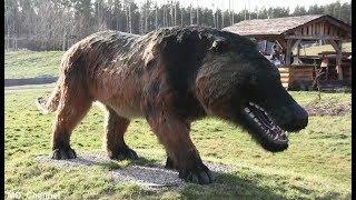 حيوانات مخيفة ستكون سعيداً لأنها انقرضت