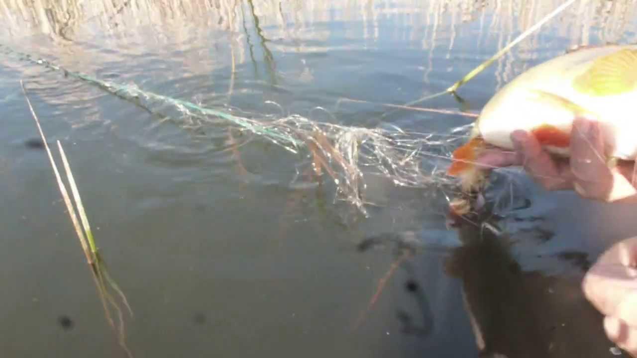 ловить утку сетями