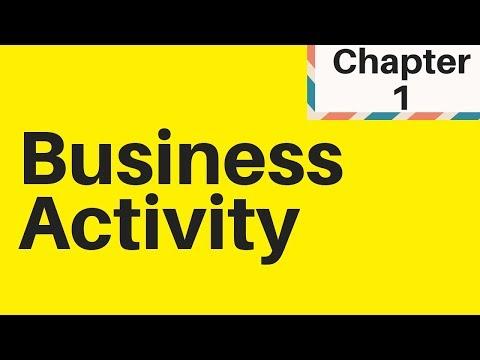 1.1 Understanding Business Activity IGCSE Business studies