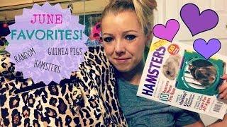 JUNE Favorites 2014 (Hamsters,Piggies,RANDOM) Thumbnail