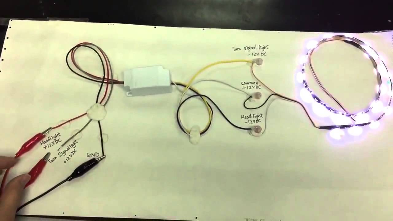Wiring Diagram For Drl Module
