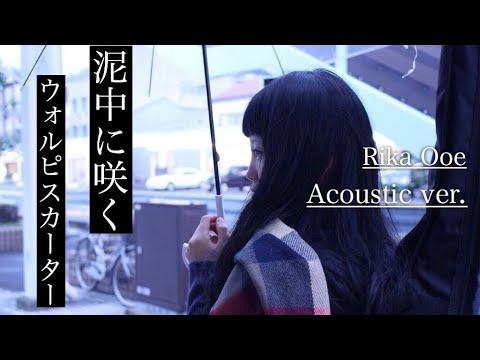 ウォルピスカーター 『 泥中に咲く 』 / 弾き語り / 耳コピ / カバー ( cover ) / 歌詞付き - YouTube