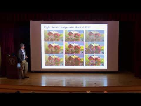 Eero Simoncelli, NYU: Perceptual implications of hierarchical models