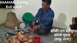 Shaman Jhakri