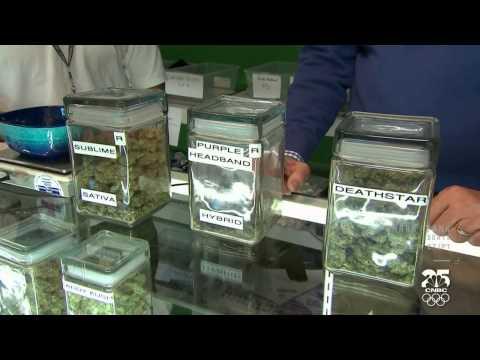 Marijuana in America (colorado pot rush)