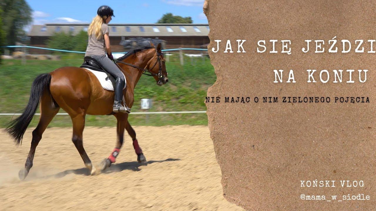 Jak się jeździ na koniu nie mając o nim zielonego pojęcia ;)