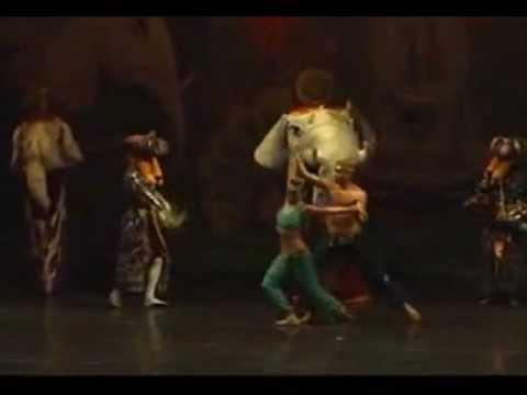 Звезда балета лев на заднем плане. ОТЖИГ