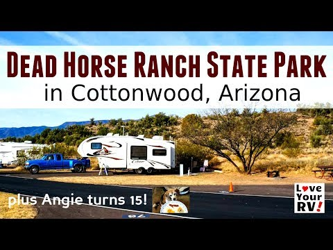 Dead Horse Ranch State Park + Angie Turns 15!