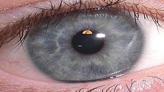 Manipulación del color de los ojos,  Ojos gris piedra ! Bio...