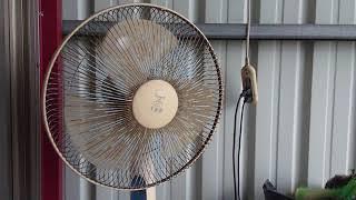 XZ2P 舊電風扇 thumbnail