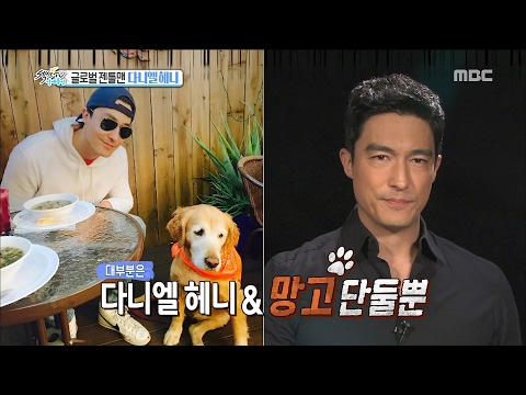 Section TV 섹션 TV  How's Daniel Henney hollywood life 20170219