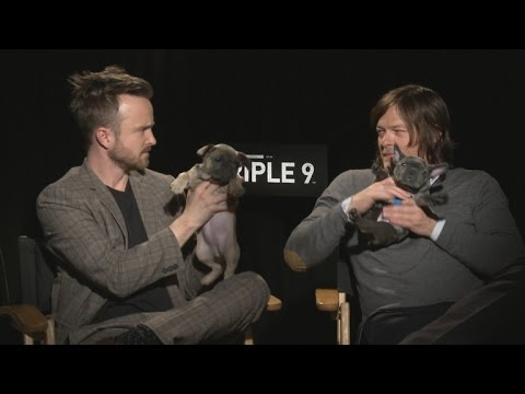 Watch Aaron Paul and Norman Reedus Give an Entire Interview While Holding Tiny Puppies