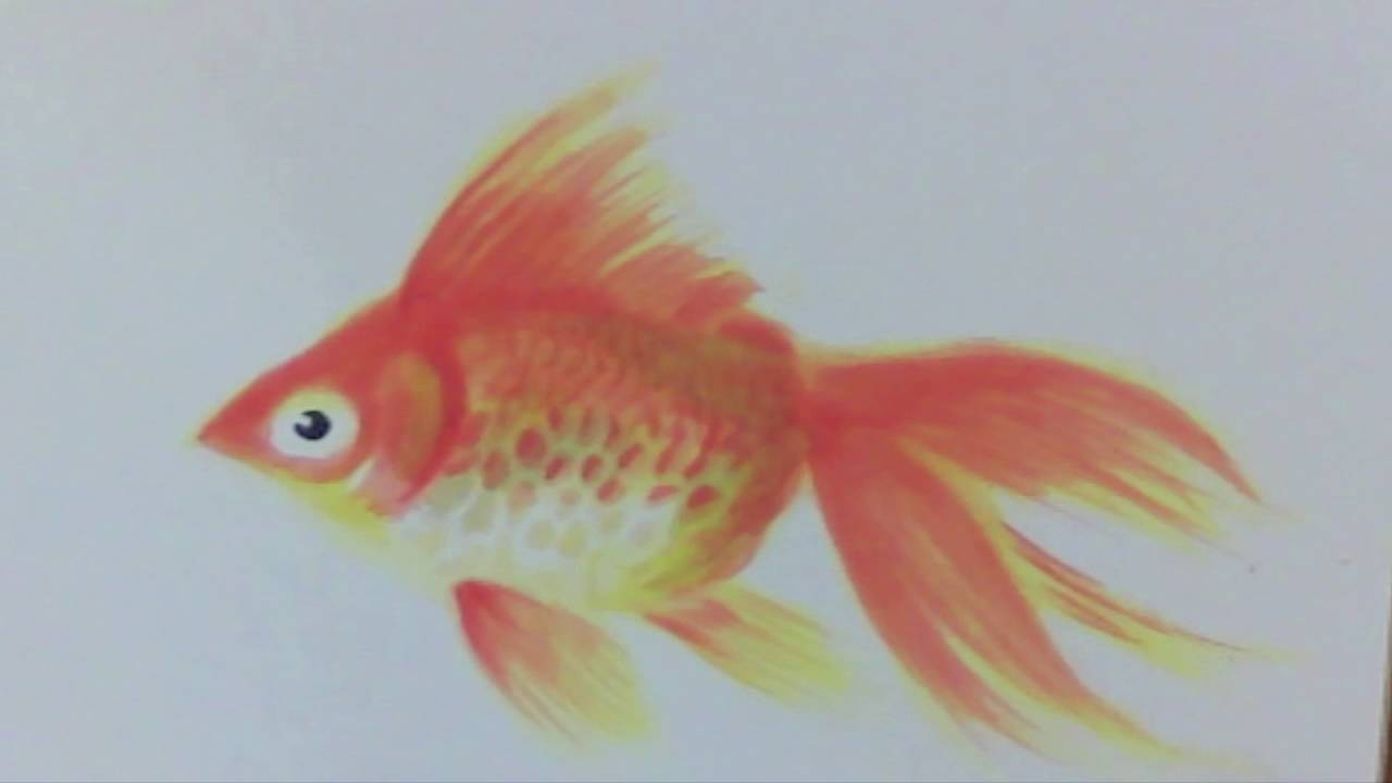 Speed Painting, Goldfish【Japanese traditional art】 - YouTube