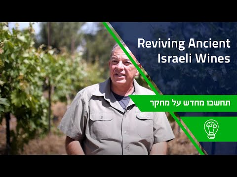 Reviving Ancient Israeli Wines