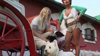 """Танец гремучих змей""(трейлер) для РТР 2005"