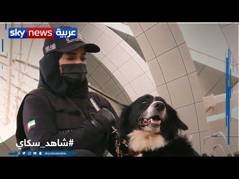 منصات | الإمارات تنجح في كشف فيروس كورونا باستخدام الكلاب البوليسية  - نشر قبل 13 ساعة