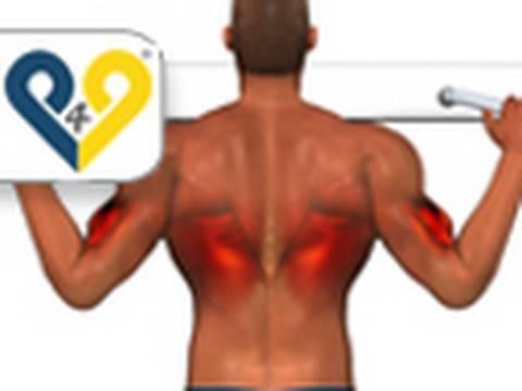 musculos que se ejercitan haciendo dominadas