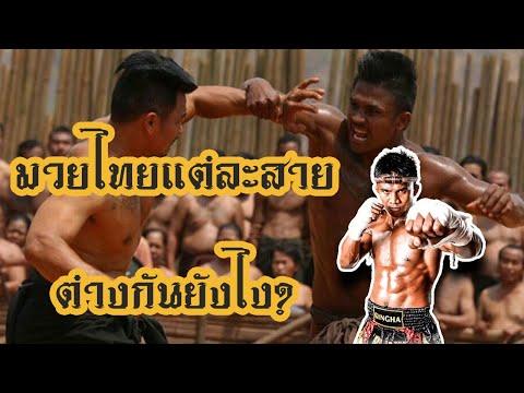 มวยไทยมีกี่สาย อะไรบ้าง แต่ละสายต่างกันอย่างไร ? (บางคนอาจไม่เคยรู้มาก่อน)   พูดไปเรื่อย Ep.6 🥊🔥