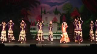 ndm dance recital 2017 the silver team