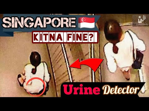 SINGAPORE 🇸🇬 ( THE FINE CITY ) Trip to Singapore  || INTERESTING FACTS || USE EARPHONES