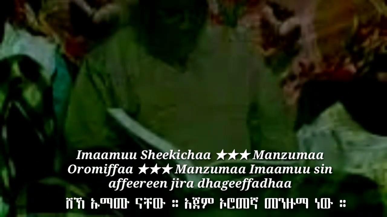 Imaamuu Sheekichaa Manzumaa Oromiffaa Manzumaa Imaamuu sin affeereen jira dhageeffadhaa
