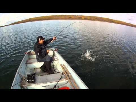 Successful Fall Walleye Jigging Tips