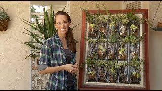 How to Make a Vertical Succulent Garden / Living Wall Art