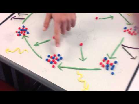 Physics @ Amity - The CNO fusion cycle