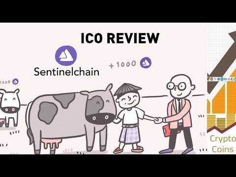 ICO Review: Sentinel Chain (SENC) The Secure Financial Services To The Unbanked
