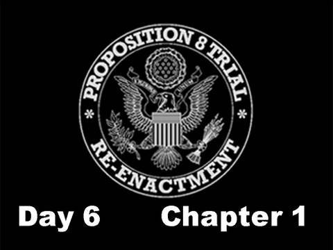 Prop 8 Trial Re-enactment, Day 6 Chapter 1