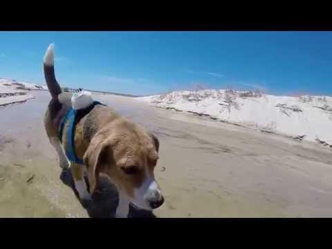 URUGUAY SPRING/SUMMER 2014/2015 (GoPro Hero 3+)
