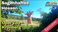 Opel Zoo Kronberg