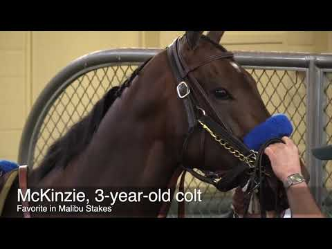 McKinzie is the racing star on opening day at Santa Anita