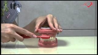 Как чистить зубы ребенку 3-6 лет(С 3 лет приучайте ребенка к самостоятельной чистке зубов, помогайте ему своей рукой. Проводите чистку зубов..., 2012-08-25T19:15:18.000Z)