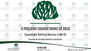 """Exposição bíblica: """"O pequeno grande Reino de Deus"""" - Marcos 4.30-32"""