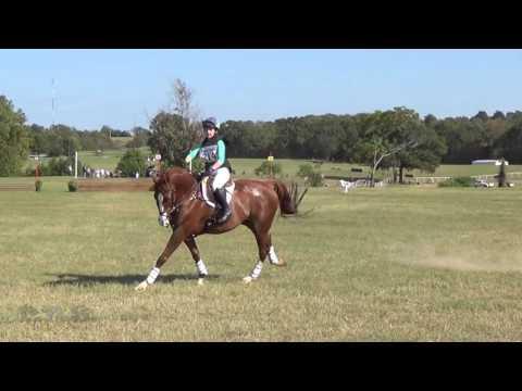 Audrey Green & Strategic Alliance Texas Rose Fall Horse Trials 2016