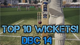 Top 10 Best Wickets Don Bradman Cricket 14