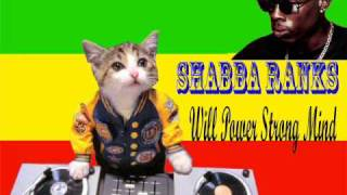 Shabba Ranks - Will power strong mind