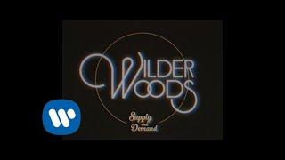 Wilder Woods - Supply & Demand (Official Visualizer)