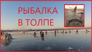 Рыбалка в толпе в черте города Первый лёд 2020 2021