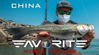 Как рыбачат и что едят в Китае Ловля морского окуня во время отлива Favorite World Fishing