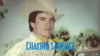 Recordando A Chalino Sanchez 2019 - Los Del Norte FT. Omar Zazueta (En Vivo)