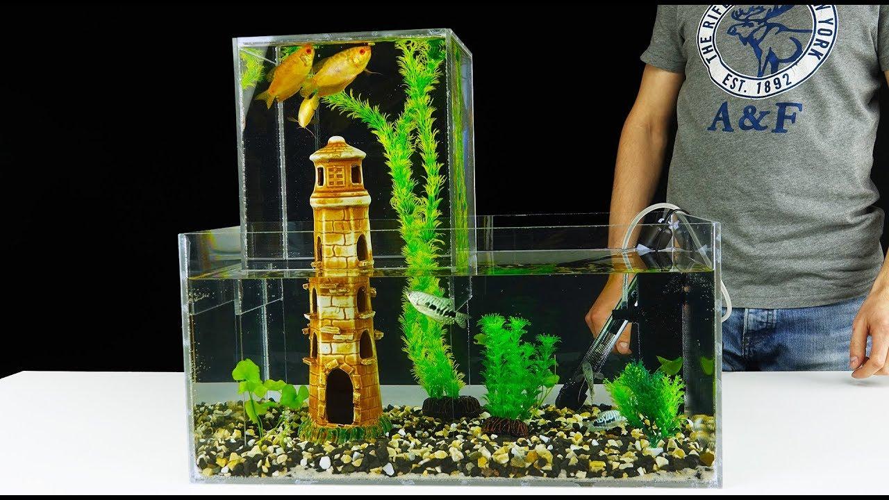 How To Build Unique Multi Level Aquarium V